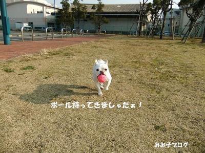 Mimiko_1385