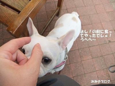 Mimiko_1434_2