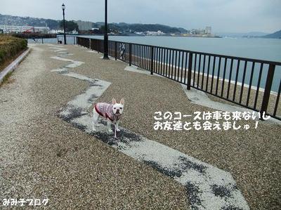 Mimiko_1466