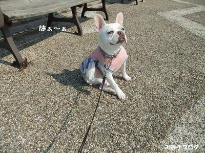 Mimiko_1495