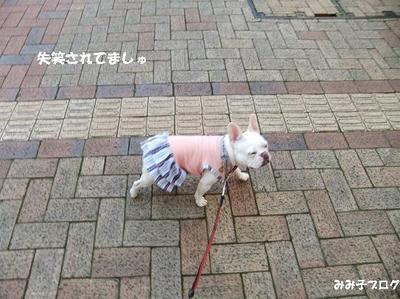 Mimiko_1505