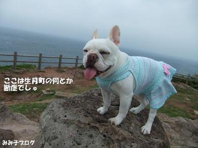 Mimiko_1584_2