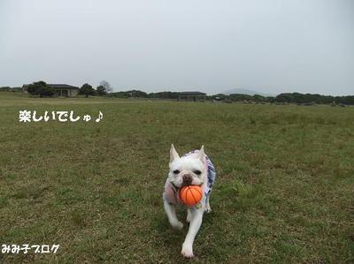 Mimiko_1591