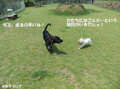 Mimiko_1619