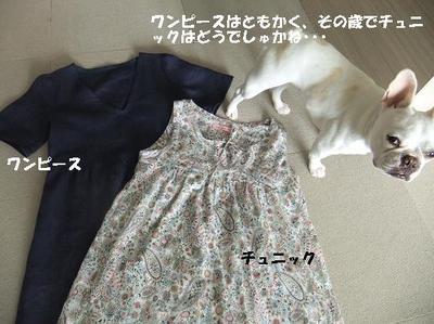 Mimiko_1718