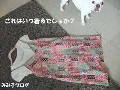 Mimiko_1786
