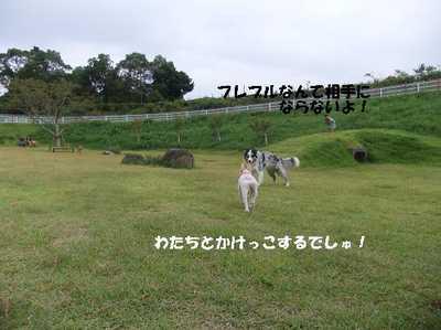 Mimiko_041