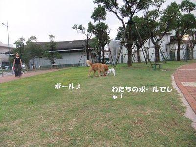 Mimiko_049