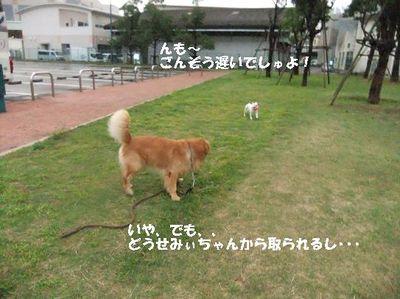 Mimiko_054