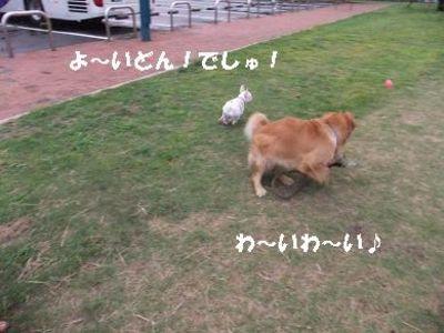 Mimiko_055