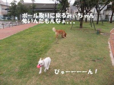 Mimiko_056