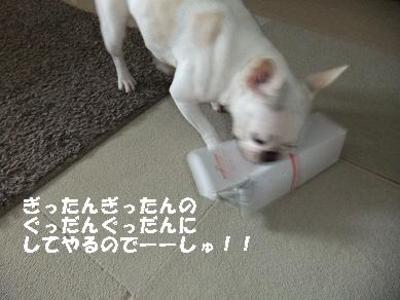 Mimiko_163
