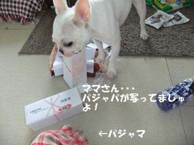 Mimiko_164