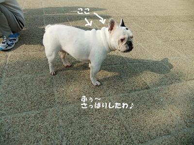 Mimiko_219