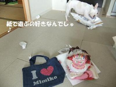 Mimiko_546