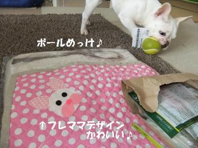 Mimiko_561
