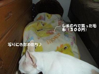 Mimiko_253