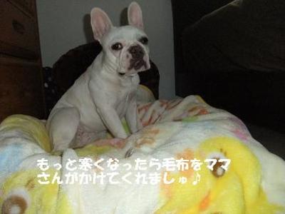 Mimiko_256