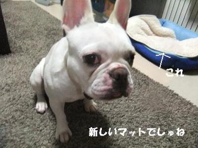 Mimiko_633
