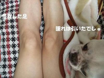 Mimiko_646