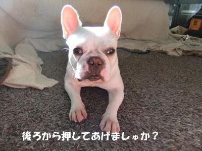 Mimiko_677