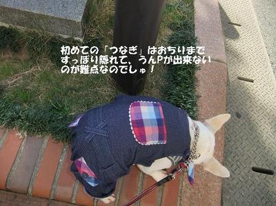 Mimiko_718