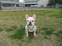 Mimiko_745_2