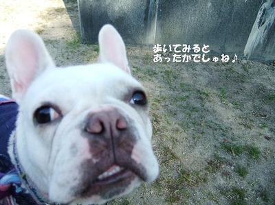 Mimiko_8212