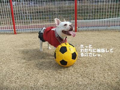Mimiko_8230_2
