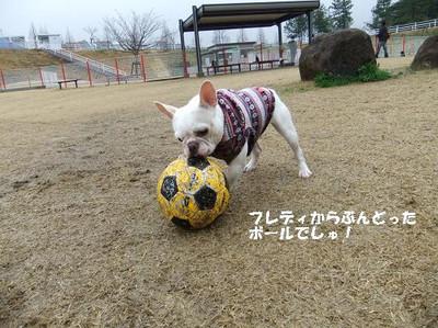 Mimiko_113