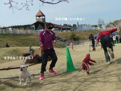 Mimiko_0382