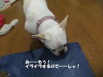Mimiko_145