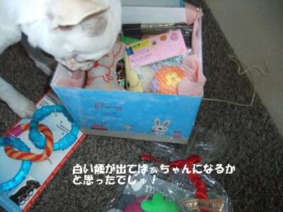 Mimiko_2310
