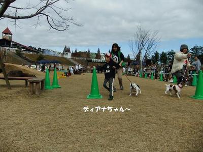 Mimiko_2215